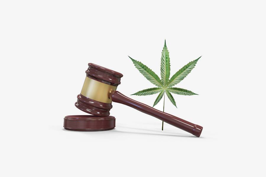 US Cannabis Regulation: What it means for Naturopathic Doctors